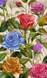 Floral Background, Colorful Rose and Flowers. Royalty Free Stock Photos