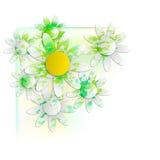 Floral background into corner Stock Images