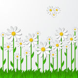Floral  background with 3d chamomiles on the grass Stock Image