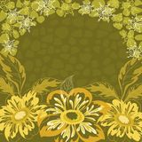 Floral background, dahlia. Flowers, leaves and contours on green Royalty Free Stock Photos
