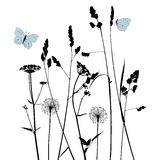 Floral background with dandelion. 2d vector Royalty Free Stock Photos