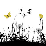 Floral background with dandelions, weeds and butterflies Royalty Free Stock Image