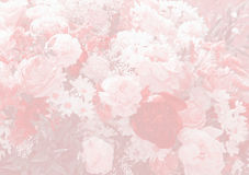 Floral background design with paeony and daisies Royalty Free Stock Photos