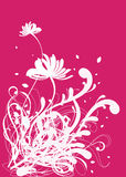 Floral background design patterns Stock Images