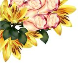 Floral background with detailed vector lily and roses Stock Images