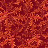 Floral background. fall wallpaper. Stock Illustration
