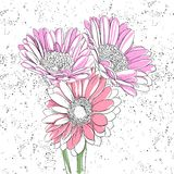 Floral background. Few flowers on white background Stock Images