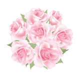 Floral background. Flower Rose bouquet. Flower rose posy decor  isolated on white background Stock Image