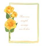 Floral background. Flower Rose frame Stock Image