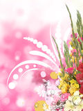 Floral Background With flowers Stock Photos