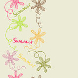 Floral background. Flowers from the garden. Summer Royalty Free Stock Photography