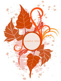 Floral  background  with frame. Vector illustration Royalty Free Stock Images