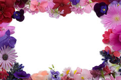 Floral background frame. Background frame of various flowers Stock Image