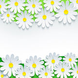 Floral background, frame with 3d flower chamomile Stock Images