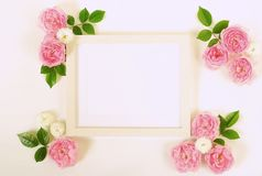 Floral frame wreath of pale pink roses flower buds and leaves. Floral background. Frameof pale pink roses flower buds and leaves and mock up frame for text on Stock Images