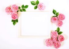 Floral frame wreath of pale pink roses flower buds and leaves. Floral background. Frameof pale pink roses flower buds and leaves and mock up frame for text on Royalty Free Stock Photo