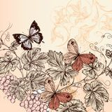 Floral background with grape and butterflies Stock Photography
