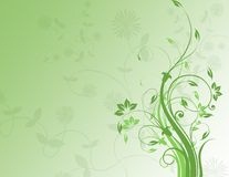 Floral background in green Stock Photos