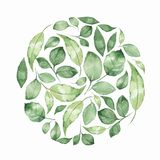 Floral background with green watercolor leaves. Floral background with watercolor leaves. Element for design Royalty Free Stock Photo