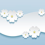 Floral background, greeting card with 3d flowers s Royalty Free Stock Photo