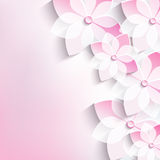 Floral background, greeting card, 3d flowers sakur Royalty Free Stock Photos