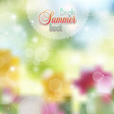 Floral background with highlights Royalty Free Stock Images