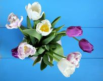 Floral background for holiday Stock Photo