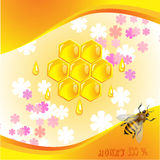 Floral background with honey Stock Photo