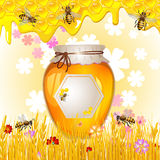 Floral background with honey Stock Photos