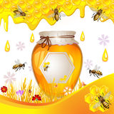 Floral background with honey Royalty Free Stock Photography