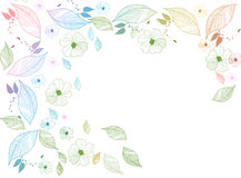 Floral Background Illustration. Flowers and leaves illustration  over white Royalty Free Stock Image