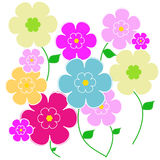 Floral background. Illustration with beautiful flowers Stock Photography