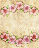Floral background illustration with pink flowers on border of fr Royalty Free Stock Images