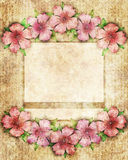 Floral background illustration with pink flowers on border of fr Stock Photo