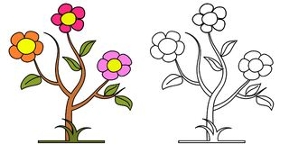 Floral background illustrations. Colorful full colors Stock Image