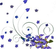 Floral background with iris Royalty Free Stock Photos