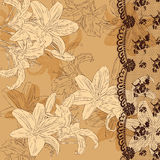 Floral background with lace Stock Image