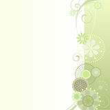 Floral background in light green. Vector illustration of a floral background in light green Royalty Free Stock Photos