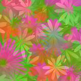 Floral background - lime green and pink Royalty Free Stock Image
