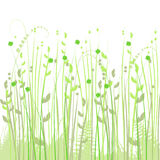 Floral background, meadow Stock Photo