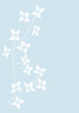 Floral background, meadow Royalty Free Stock Photo