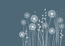 Floral background, meadow, garden Royalty Free Stock Images