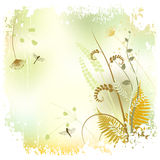 Floral background, meadow in summer time Stock Photo
