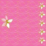 Floral background and mother's day card Stock Photos
