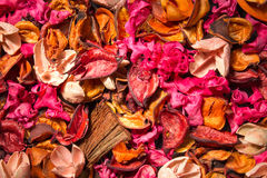 Floral background of multicolored fragments. Dried flowers for the background scattered on the table Royalty Free Stock Image