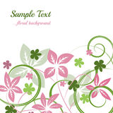 Floral background with natural decoration Royalty Free Stock Photos