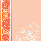 A Floral Background in Orange  Royalty Free Stock Photos