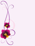 Floral background with orchid flowers, design element. Royalty Free Stock Photos