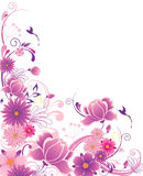 Floral background with ornament Royalty Free Stock Images