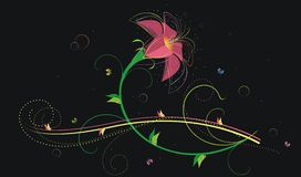 Floral background5 Royalty Free Stock Photos